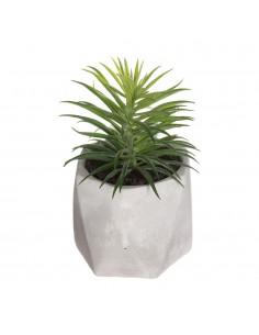 Planta decorativa con maceta 7x14cm modelos suritdos