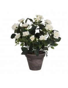 Rosal blanco pvc con maceta gris