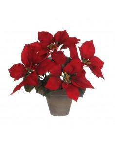 Planta poinsettia roja en maceta gris 27x35cm