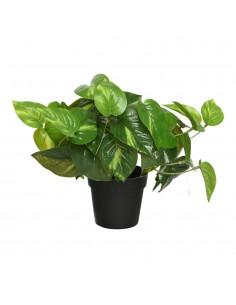 Planta artificial potus