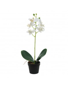 Planta artificial orquidea blanca