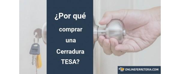Razones para Comprar una Cerradura Metálica TESA